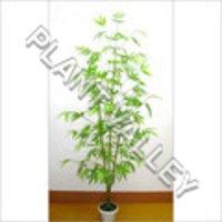 Artificial Succulents Plant
