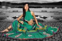 Sky Blue Fancy Sarees