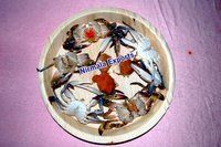 Weddings Disposable Platters