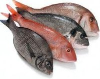 Hydrolysed Animal Protein (Fish)