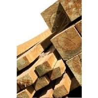 Industrial Pine Wood Logs