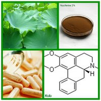 Loss Weight Ingredient Lotus Leaf Extract Nuciferine 2% ~98% HPLC