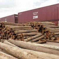 Salwood Logs