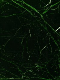 Pacific Platinum Marble