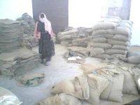 Fresh Chakki Atta Gold 25 Kg Bag