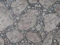 Stamp Concrete Flooring Services