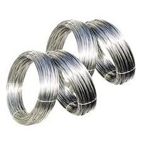 Stainless Steel 304 Wires