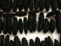 Dried Sea Cucumber (Prickly Black Fish)