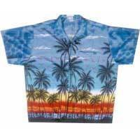 Men's Beach Shirts