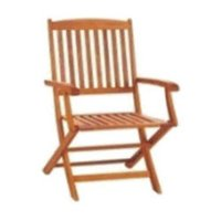 Nelson Folding Arm Chairs