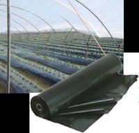 Mulch Film Black