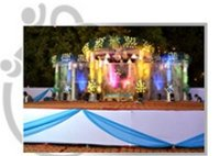 Designer Wedding Chaat Stall