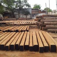 Timber Wood Navsari