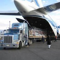 International Air Freight Forwarding