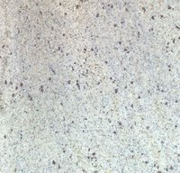 Kashmir White Granites