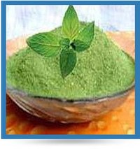 Dehydrate Mint Powder