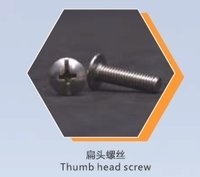 Thumb Head Screw