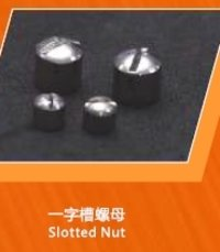 Stainless Steel Slotted Nuts