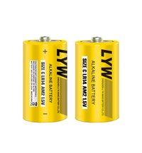 LR14C Alkaline Battery