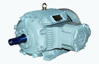 Durable Flame Proof Motors