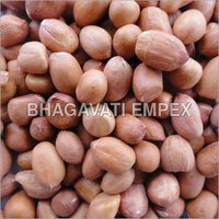 Ground Nut Seeds