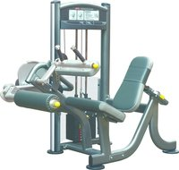 Seated Leg Curl Machine (IT 9006)