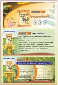 Fertilizer Fertis-WG