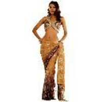 Shaded Sequin Beading Saree