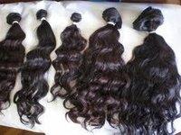Indian Culy Human Hair