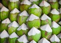 Tender Water Coconut