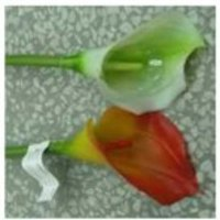 Artificial Single Stem Flower (77PVC003)