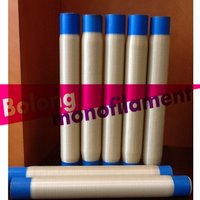 PPS Monofilament Yarn