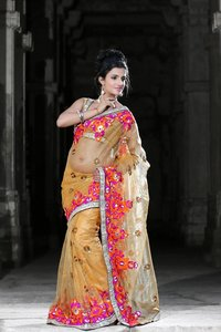 Carrot Orange Net Saree With Unstitched Blouse (923)