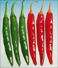 Chilli Seeds (S-222)