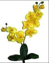 AF 31 Orchid With Root Artificial Flowers