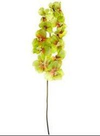 AF Venda Orchid Artificial Flowers