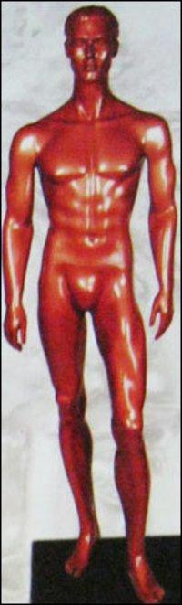 Mannequins (Smm-17)