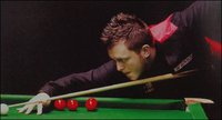 Int Club Snooker Table