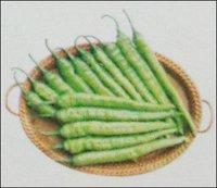Hybrid Green Chilly Seeds (Bikram)