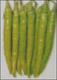 Hybrid Green Chilly Seeds (Bheema)
