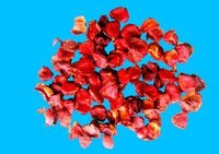 Dried Gac Fruit Pulp (Aril)