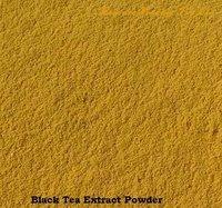 Black Tea Extract Powders