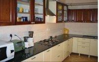 Stylish Kitchens Cabinets