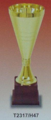 Metal Trophies (T2317/H47)