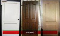 Honeycomb Skin Doors