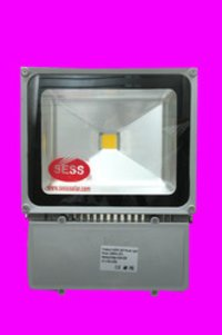 LED Flood Light Medium