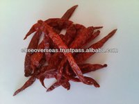 Wrinkle Red Chilli