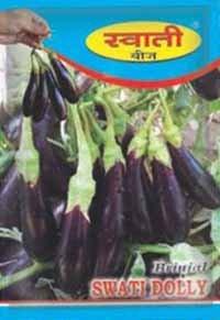 SWATI DOLLY Brinjal Seeds