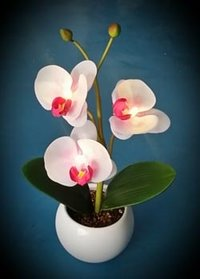 White Orchids Artificial Flower