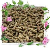Sugar Beet Pulp Pellets